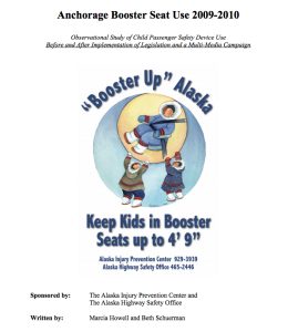 2009 2010 booster seat report image
