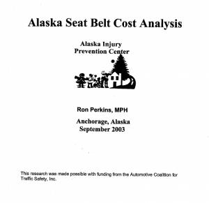 Seat belt cost analysis